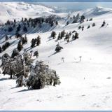 Vassilitsa, a vast area in snow