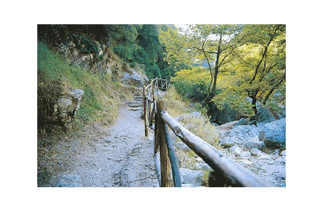 Dimossari canyon, with a safe path, mostly in summertime, which ends to a waterfall DIMOSSARI (Settlement) LEFKADA