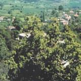 Dyo Vouna, partial view of the village