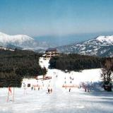 Lailias, a view of the slopes full of skiers