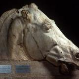 Parthenon sculptures: horse from the chariot of Selene
