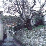 Kaloni, typical paved road