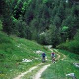 Cycling on Olympos