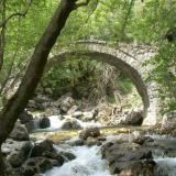 Traditional stone bridge at Anthochori