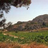 The site of ancient Pressos
